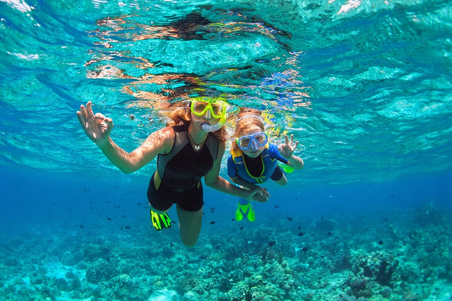 Cabo Snorkeling Tours