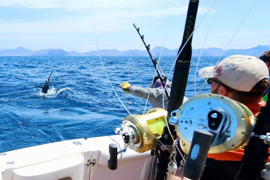 Warrior Sport Fishing Cabo