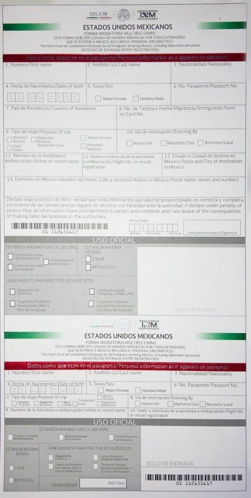 Mexican Customs Declarations Form - Form FMM
